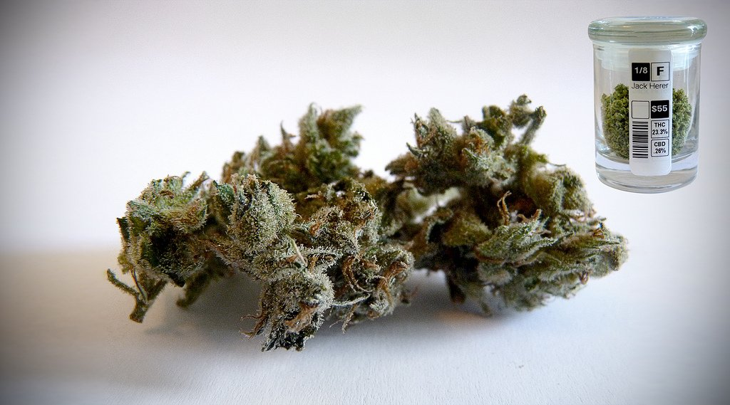 What is the best Marijuana strain for productivity
