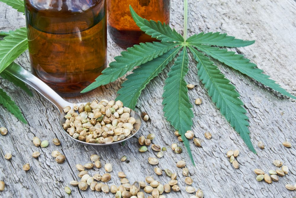 All about auto-flowering marijuana seeds